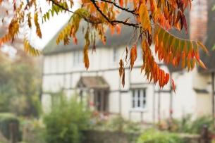 Autumn comes to Little Talboys