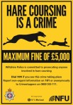 Hare Coursing