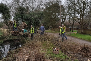 Shed pond clearing Jan 2018-2