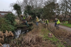 Shed pond clearing Jan 2018-3