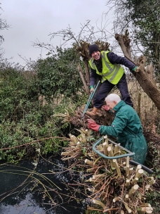 Shed pond clearing Jan 2018-4