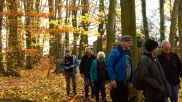 Late autumn Bromham walk November 2018
