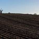 Lovely view of the windmill walking out of Wilton, January 2019