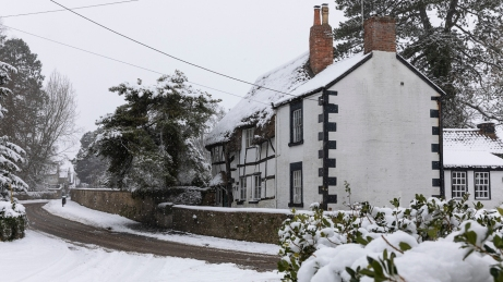 Snow day Feb 1 2019-6674