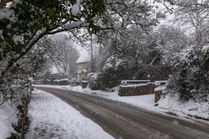 Snow day Feb 1 2019-6709