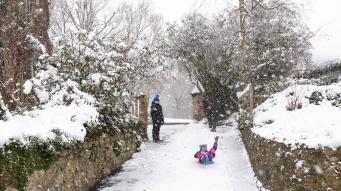 Snow day Feb 1 2019-6740