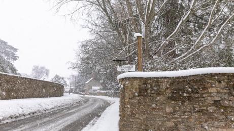 Snow day Feb 1 2019-6780
