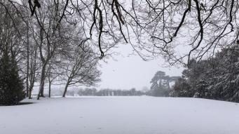 Snow day Feb 1 2019-6782