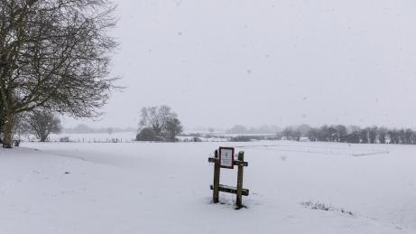 Snow day Feb 1 2019-6787