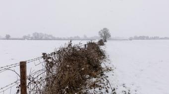 Snow day Feb 1 2019-6809