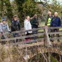 Tellisford Bridge, on the Wingfield walk May 2021